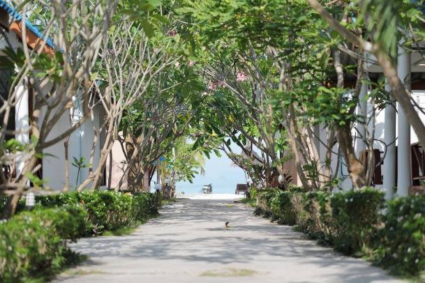 Mauritius National Botanical Garden