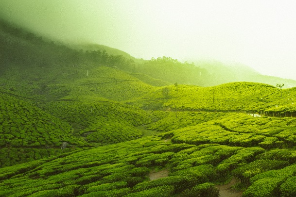 Best 20 Places to visit on October in India
