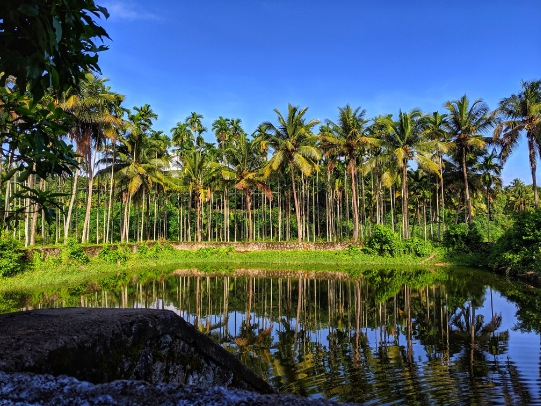 Best Offbeat Travel Destinations in Kerala