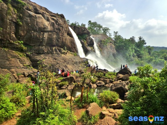 Best things to do on your honeymoon in Munnar