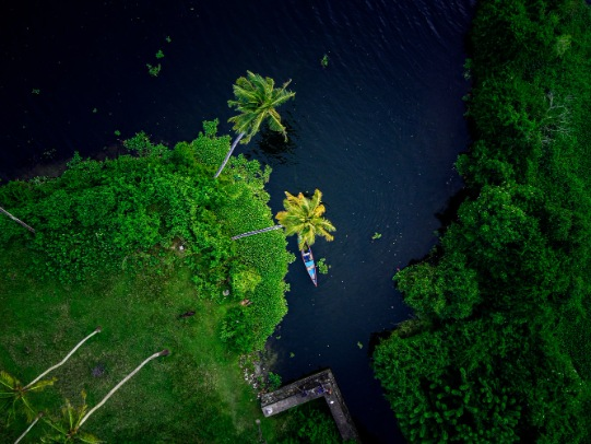 5 Amazing Destination To Visit In Kerala With Family