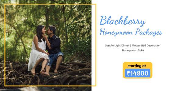 https://www.seasonzindia.com/tours/5-days-kerala-honeymoon-packages-28
