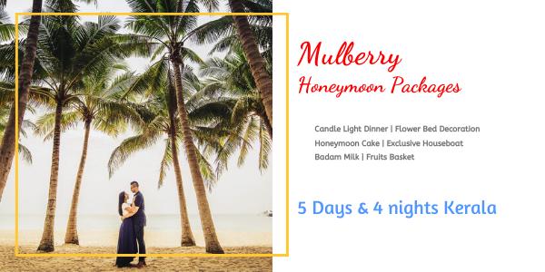 https://www.seasonzindia.com/tours/3-days-Kerala-honeymoon-packages-3