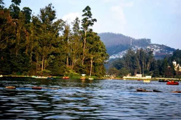 Ooty Honeymoon Packages