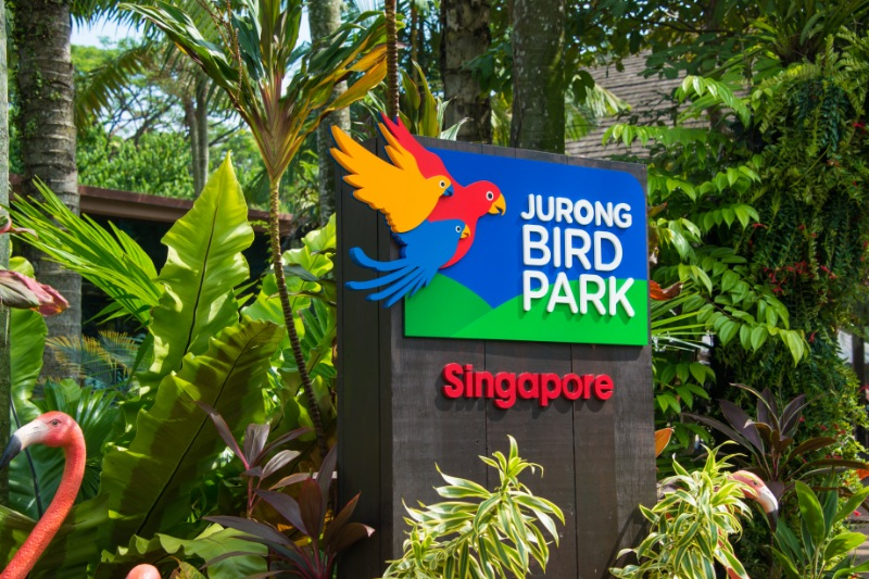 Singapore Tour Packages for family