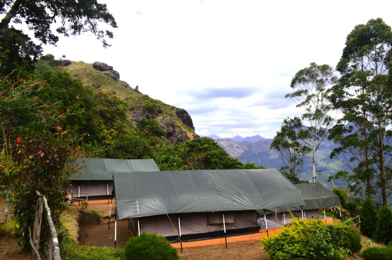 Munnar Tree House Honeymoon Packages
