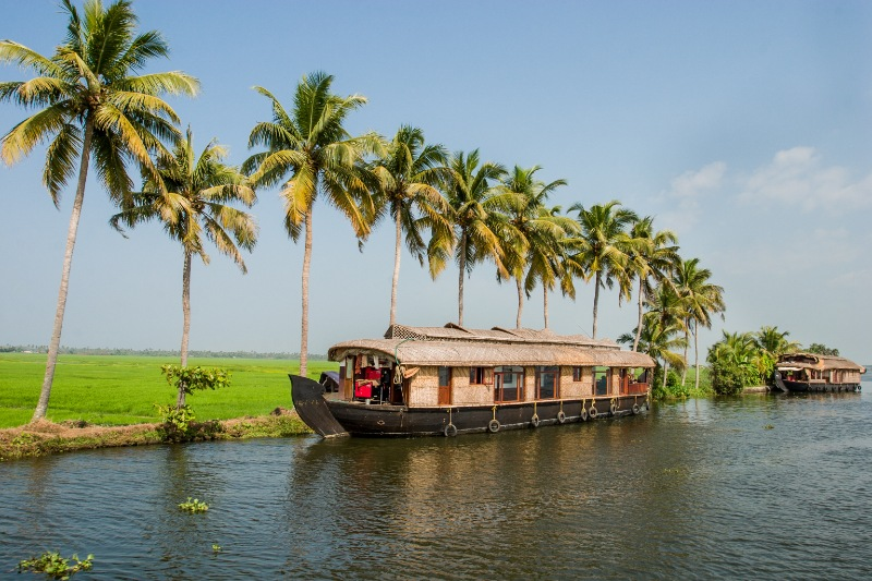 Kerala Honeymoon Packages from Vadodara