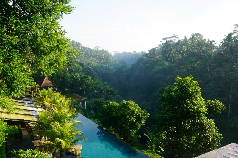 Cheap Bali Honeymoon Packages