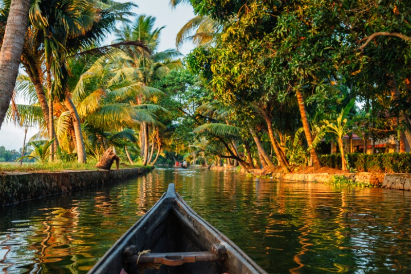 Alleppey Honeymoon Packages