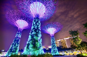 Singapore arrival - Gardens by the Bay