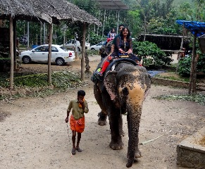 https://www.seasonzindia.com/tours/kerala-honeymoon-packages-from-pune
