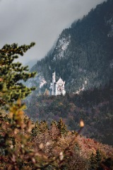 Shimla & Kufri Sightseeing