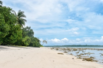 Travel to Havelock Island & Visit Radhanagar Beach