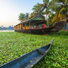 Cochin arrival to Alleppey